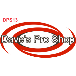 DPS13
