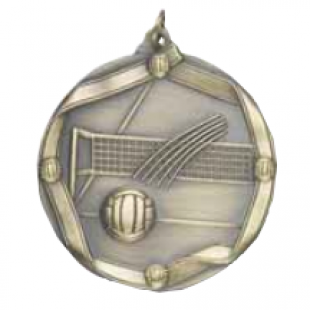 "Volleyball 2-1/4"" Die Cast Medal"